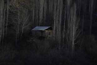 House in the dark