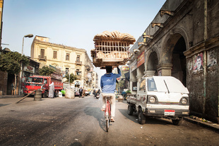 Bicycles of Cairo