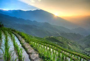 Sunrise at Longji