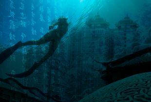 diver-sea-shanghai