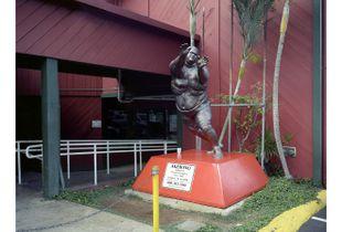 Akebono Taro, Hawaiian Sumo Champion