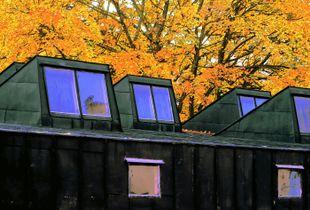 2010 Helsinki Punavuori 003