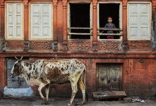 A girl from Jodhpur