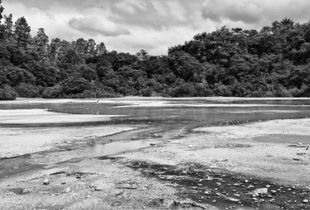 The Transient Landscape II