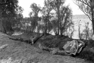 Sleep when you can, where you can was the golden rule.  The operation tempo was unbelievable and summer temperatures didn't make things any easier.  Daily patrols in the noon summer heat zapped all your energy.  Taking away any desire to eat, drink, sleep, or service gear, but it had to be done.  You did it because your team/platoon's survival depended on it.