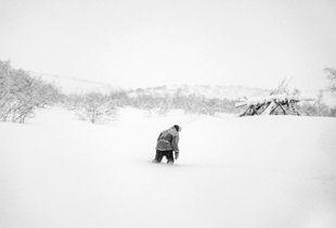 Reindeer herder in deep snow