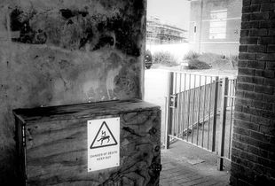 Suicide Alley