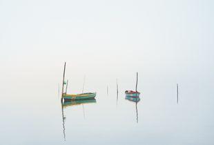 Fishermans Fog