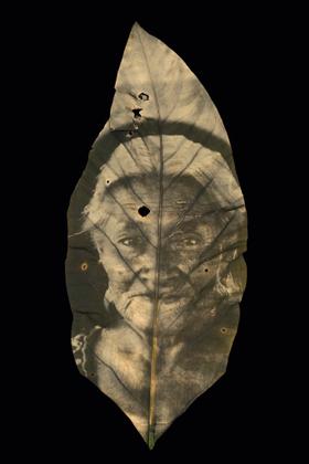 01 TZELTAL OLD WOMEN - CHIAPAS, MEXICO  Cholrophyill print on Anthurium crassinervium Leaf