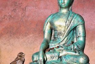 Considering Enlightenment