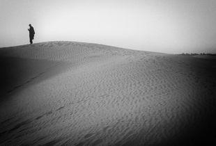 Wandering in the desert