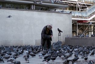 Man asks the bird