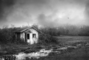 Lost Shed