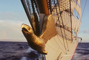 The EAGLE at Sea