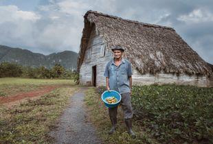 Portrait of a guajiro in Viñales, Cuba