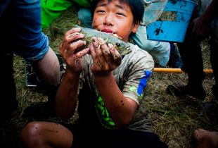 Boy (Hirabari satoyama, Japan)