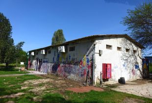 My Village at Corona days.