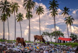 Nungwi village, Zanzibar.