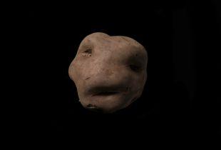 A Native Potato called Puka Sonqo