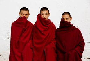 Brothers By Buddhism