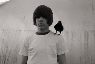Boy with black bird.
