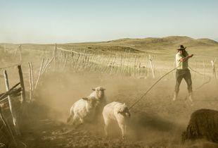 The gaucho, a proud vagabond
