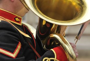 Audience of the Buckingham Palace Band