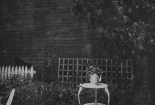 un-titled, (garden flowers nasturtium), handcrafted héliogravure print, 2016
