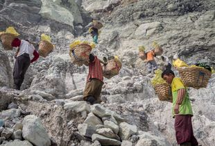 Sulfur miners, Kawah ijen. Indonesia.