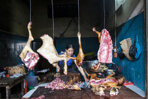 Yangshou market