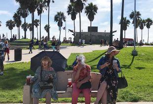 Life Is a Carnaval. Venice Beach, CA 2019