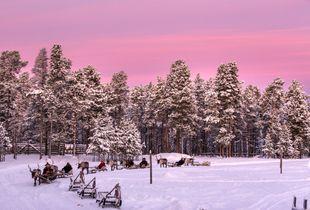 finnish arctic colors