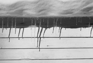 Around the House, Winter © Abbey Box