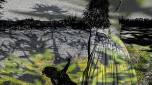 L'apologie des ombres