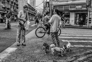 Street Gossip
