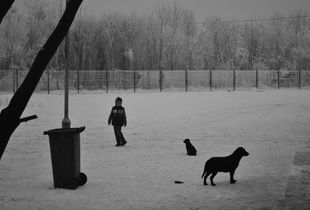 The kid and the cold