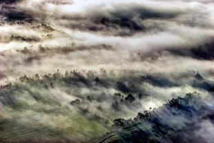 Misty Long Shadows