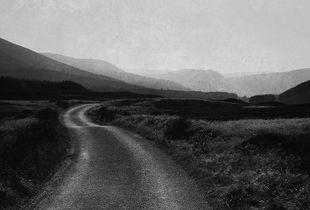 Road Into Glen Feshie