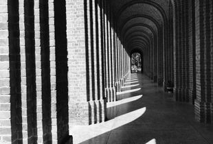 Symmetry of light. Shadow is colour as light, but less brilliant ; light and shadow are only the relation of two tones.