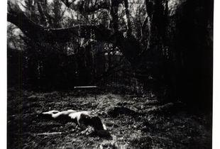 © Katrina Evans