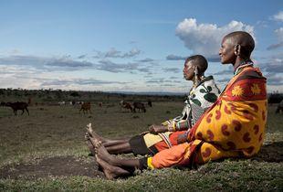 Maasai women looking on their herd (Maasai Mara - Kenya)