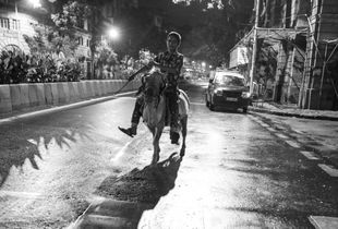 Boy riding Donkey