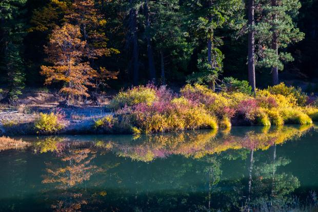 Water in Fall 1