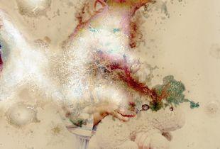 Impermanence_Untitled, 2013