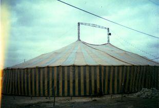 Pisco Circus