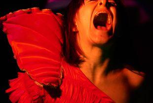 Collapsing The Night: Lisa Screams