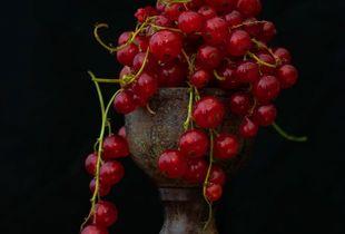 Besjes Berries