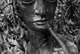 Maiden.  Sissinghurst, UK