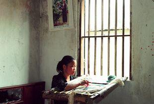 Quat Dong from Home Work © Tessa Bunney