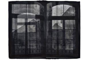Aperturæ Mentis #4-Palladium Print